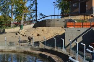 Gradina Zoologică Braşov