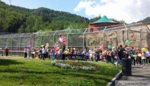 Grădina zoo Brașov - program de iarnă