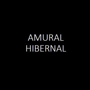 AMURAL Hibernal 2019