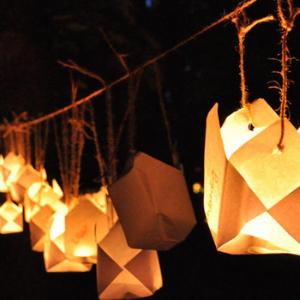 Festivalul Luminii Brasov 2019